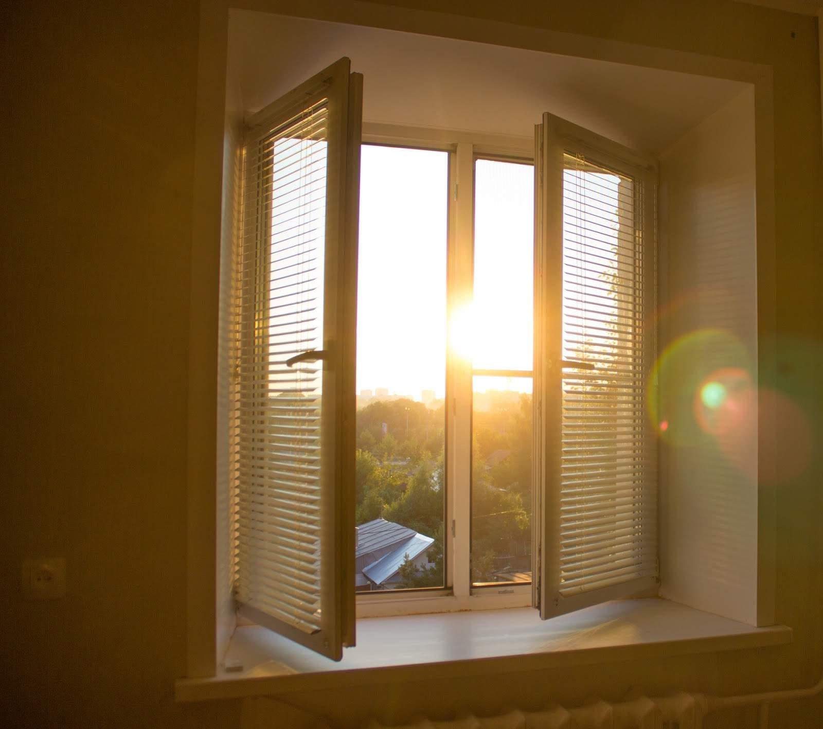 Staňte sa pánom svojho tieňa – aké máte možnosti?